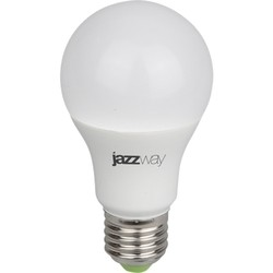 Jazzway PPG A60 9W Fito E27