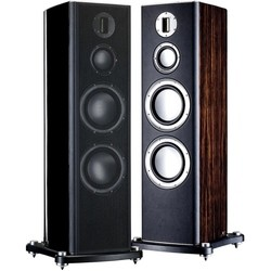 Monitor Audio Platinum PL300
