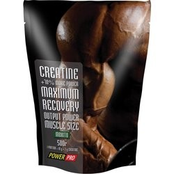 Power Pro Creatine 500 g